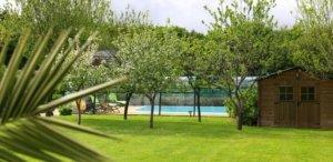 Une piscine sous une verrière entourée de verdure