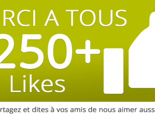 250+ Likes Facebook