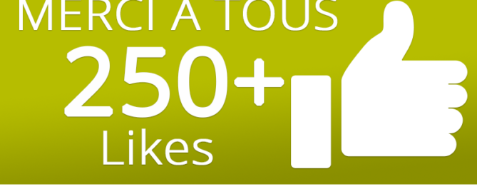 250 likes sur facebook