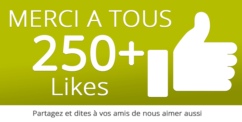 250 likes sur facebook